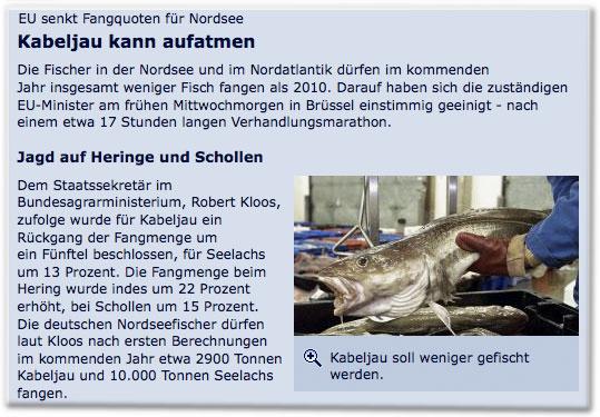 EU senkt Fangquoten für Nordsee: Kabeljau kann aufatmen